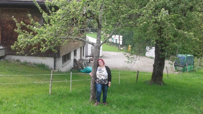 mein Baum und ich