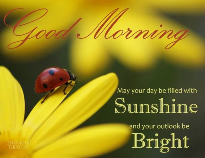 301047-Good-Morning-May-Your-Day-Be-Filled-With-Sunshine-And-Your-Outlook-Be-Bright