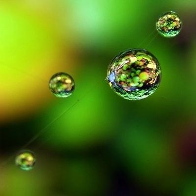579e6eb384c07bfb94c9350528f17e72--dew-drops-rain-drops